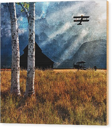 Birch Trees And Biplanes  Wood Print by Bob Orsillo