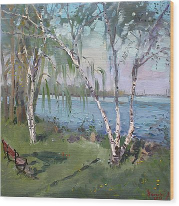 Birch Trees By The River Wood Print by Ylli Haruni