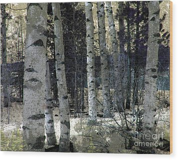 Wood Print featuring the photograph Birch Trees In Snow  by Irina Hays