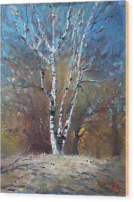 Birch Trees Wood Print by Ylli Haruni