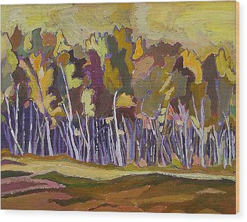 Birches In Autumn Wood Print by Janet Ashworth