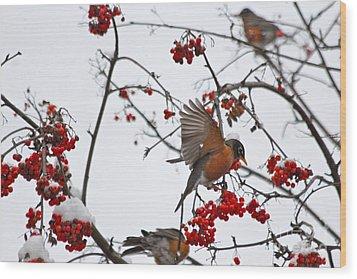 Bird And Berries Wood Print