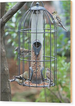 Bird Breakfast Wood Print