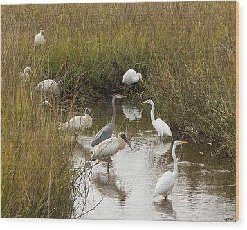 Bird Brunch Wood Print