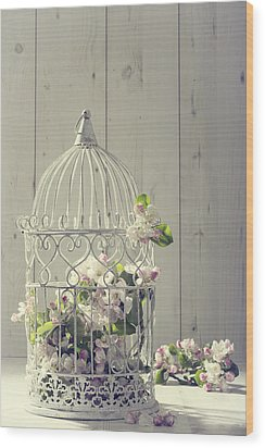 Bird Cage Wood Print by Amanda Elwell