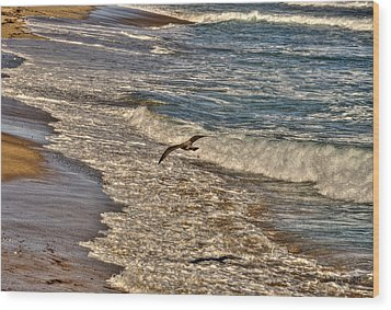 Wood Print featuring the pyrography Bird Gliding Over Seashore by Julis Simo