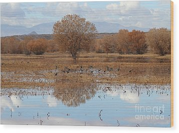 Wood Print featuring the photograph Bird Heaven by Ruth Jolly
