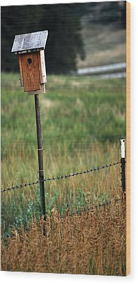Wood Print featuring the photograph Bird House 40 by Amee Cave