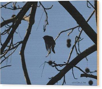 Wood Print featuring the photograph Bird In Flight by Tara Potts