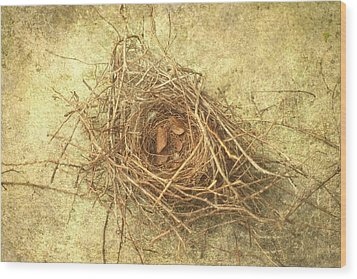 Bird Nest II Wood Print by Suzanne Powers