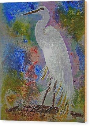 Bird Of Beauty Wood Print
