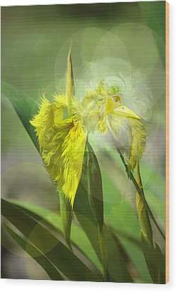 Wood Print featuring the photograph Bird Of Iris by Adria Trail