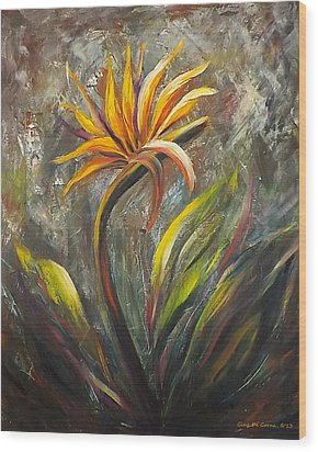 Bird Of Paradise 63 Wood Print