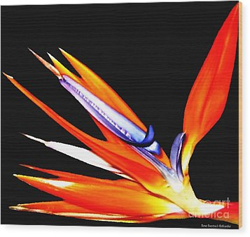 Wood Print featuring the photograph Bird Of Paradise Flower With Oil Painting Effect by Rose Santuci-Sofranko