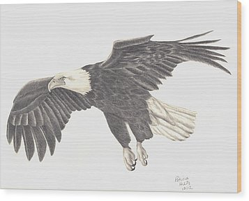 Bird Of Prey Wood Print by Patricia Hiltz