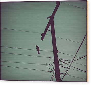 Bird On A Wire Wood Print by Patricia Strand