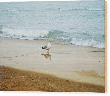 Wood Print featuring the photograph Bird On The Beach by Milena Ilieva