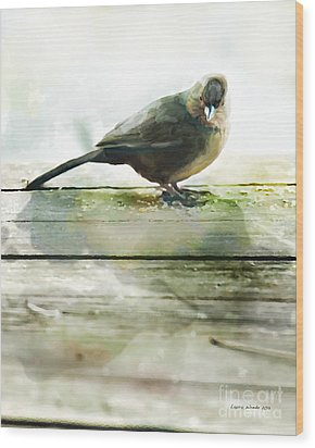 Bird On The Deck Wood Print by Artist and Photographer Laura Wrede