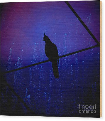 Bird On The Wire ... Wood Print by Chris Armytage