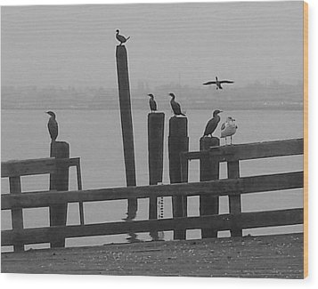 Bird Party In Black And White Wood Print by Karen Molenaar Terrell