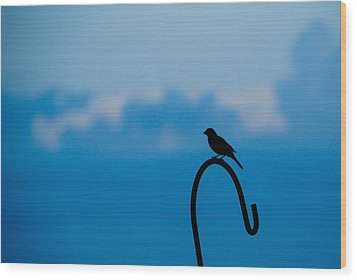 Wood Print featuring the photograph Bird Silhouette  by Dee Dee  Whittle