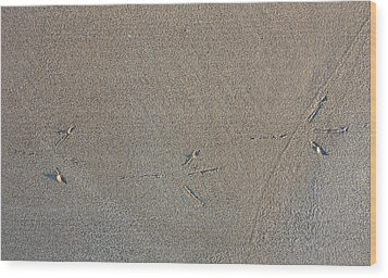 Bird Tracks Wood Print by Steven Ralser