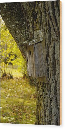 Wood Print featuring the photograph Birdhouse by Alex King