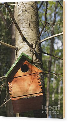 Birdhouse By Line Gagne Wood Print by Line Gagne