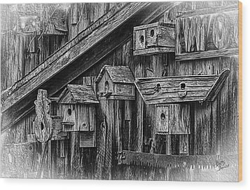 Birdhouse Collection Wood Print by Betty Denise