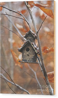 Wood Print featuring the photograph Birdhouse Hanging On Branch With Leaves by Sandra Cunningham