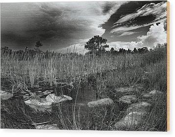 Birdon Canal Wood Print