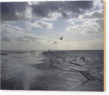 Birds At The Beach 2 Wood Print
