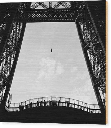 Birds-eye View Wood Print by Dave Bowman