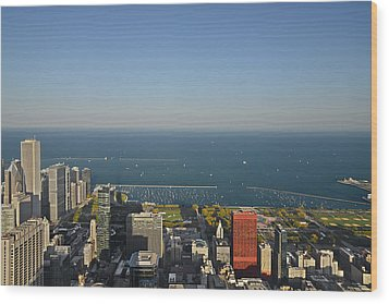Bird's Eye View Of Chicago's Lakefront Wood Print by Christine Till