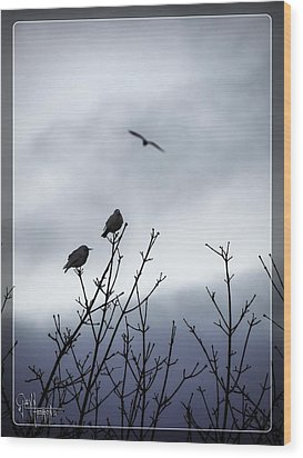 Birds For Breakfast Wood Print by Glenn Feron