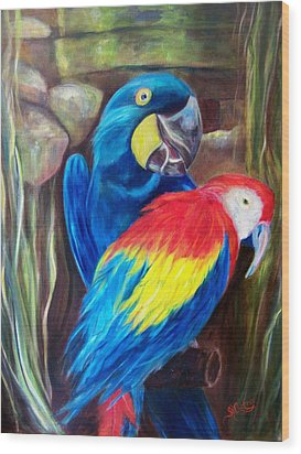 Bird's Of A Feather, Macaws Wood Print