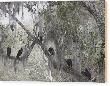 Birds On A Limb Wood Print by Kimberly Oegerle