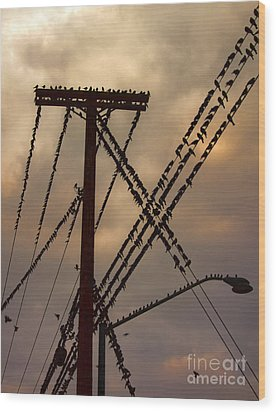 Birds On A Wire Wood Print by Gregory Dyer