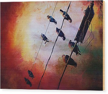 Wood Print featuring the photograph Birds On A Wire by Micki Findlay