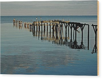 Birds On Old Dock On The Bay Wood Print by Michael Thomas