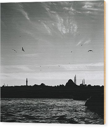 Birds Over The Golden Horn Wood Print