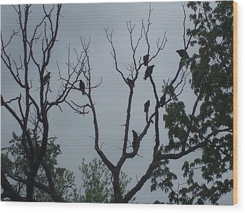 Wood Print featuring the photograph Birds by Fortunate Findings Shirley Dickerson