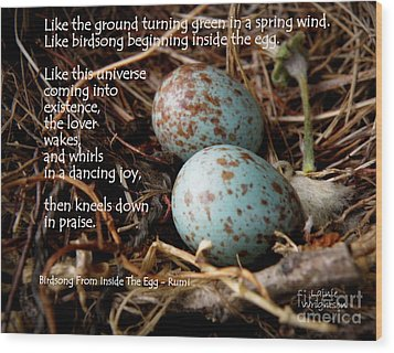 Birdsong From Inside The Egg Wood Print by Lainie Wrightson