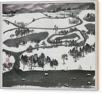 Birdview Of Forest Park From Queeny Tower Wood Print by Ping Yan
