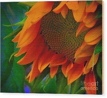 Birth Of A Sunflower Wood Print