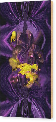 Wood Print featuring the photograph Birth Of Universe by Robert Kernodle