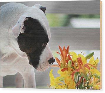 Birthday Bouquet Wood Print by Shelley Neff