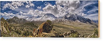 Bishop California Wood Print by Cat Connor