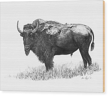 Bison Wood Print by Aaron Spong