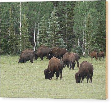 Bison At North Rim Wood Print